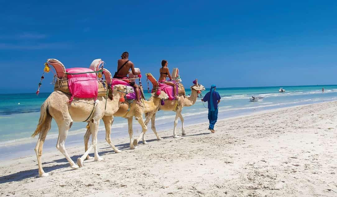 Лучшие отели Туниса для отдыха с детьми